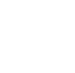 Special Division