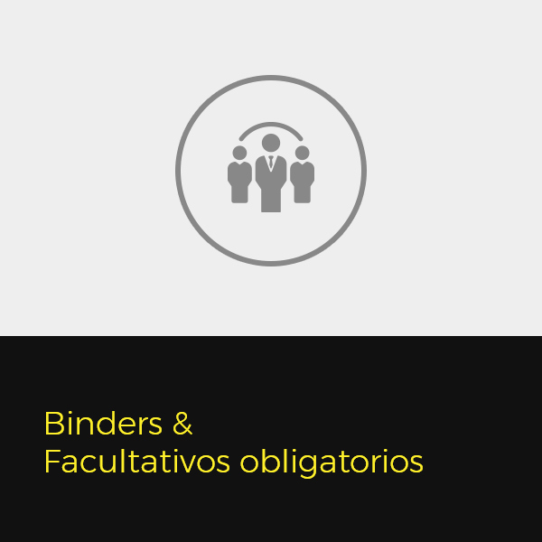 Binders & Facultativos obligatorios